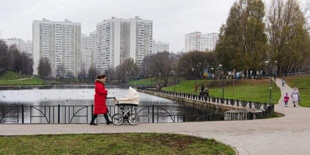 Собянин упростил порядок получения социальных выплат семьями с детьми. Фото: Е. Самарин
