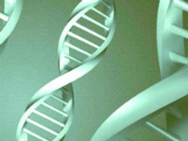 Spiegel: Ученые дебатируют о способности коронавируса проникать в гены