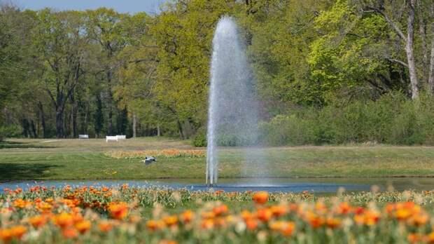 В Ленобласти мужчина решил доплыть до фонтана в пруду и утонул