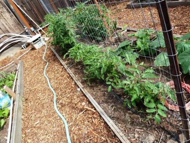 Украшение садового участка своими руками - оформление дачи своими руками (7)