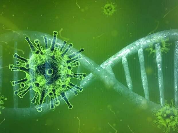 Британский, индийский и другие штаммы коронавируса получили новые имена