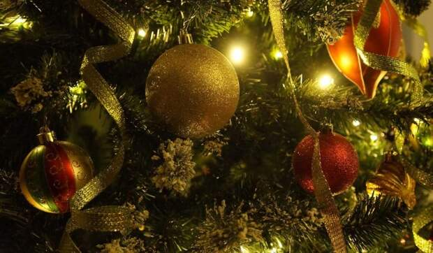 «Не надо мычать по-бычьи»: что можно и чего нельзя делать в Новый год