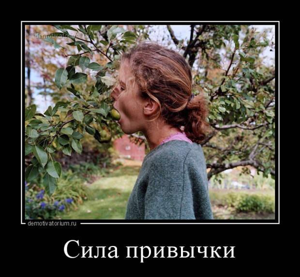5402287_demotivatorium_ru_sila_privichki_138006 (600x554, 153Kb)