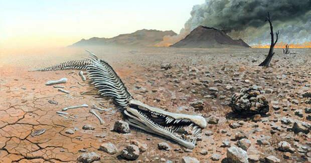Массовые вымирания на Земле происходят каждые 27 миллионов лет