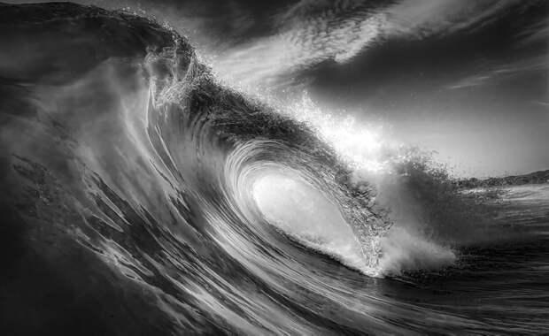 Океанская волна / Фото: wsspc.org