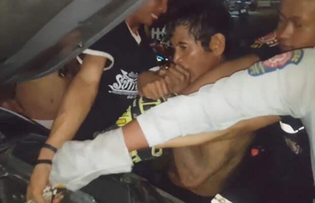 Питона укусили за хвост, чтобы освободить его из двигателя автомобиля agronews, питон, трюк, змеелов, спасатель, Таиланд, хвост
