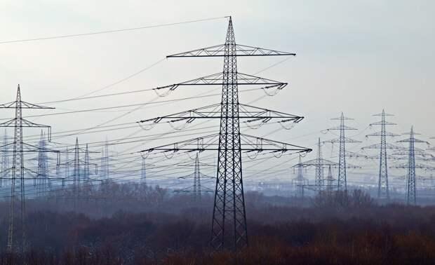 В Глазове организовали проверку по факту падения дерева на линию электропередач