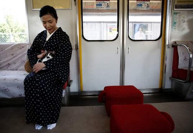 Котопоезд в Японии