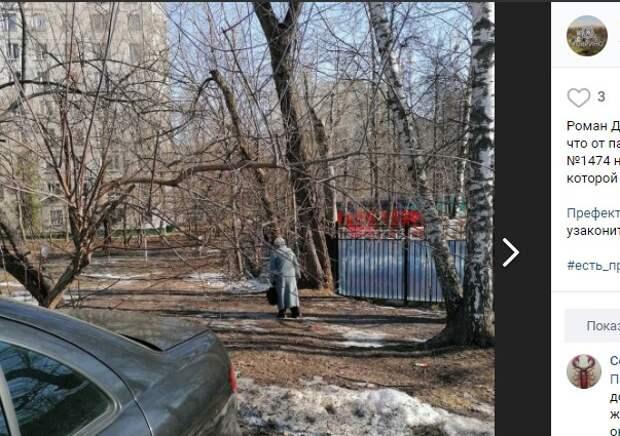 «Народную тропу» к садику на Клинской постараются окультурить