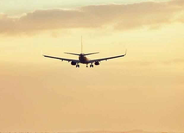 Еврокомиссия сочла запрет на полёты неэффективным против пандемии