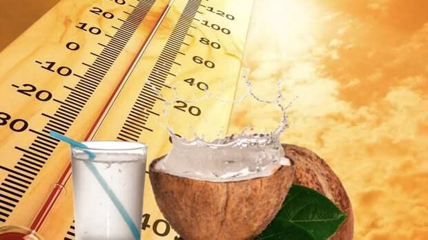 Какие продукты помогут победить жару