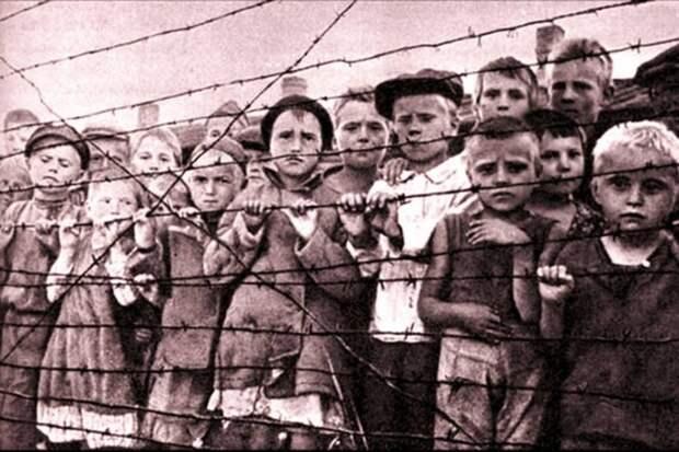 """Закон не """"для своих"""": Великая Отечественная должна остаться Великой Отечественной"""