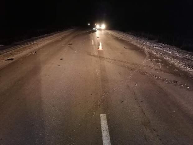 Незамеченного в темноте пешехода дважды сбили на дороге в Удмуртии