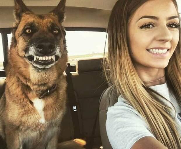 Классные и веселые фотографии для улыбки и позитива