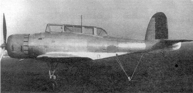 skua-1.jpg