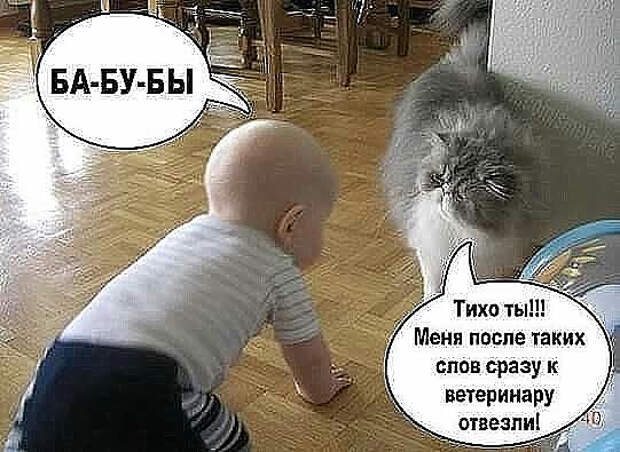 Жена говорит мужу... Улыбнемся))