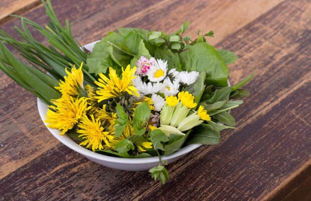 Сорняки на закуску. Природа щедро делится здоровой едой - только бери