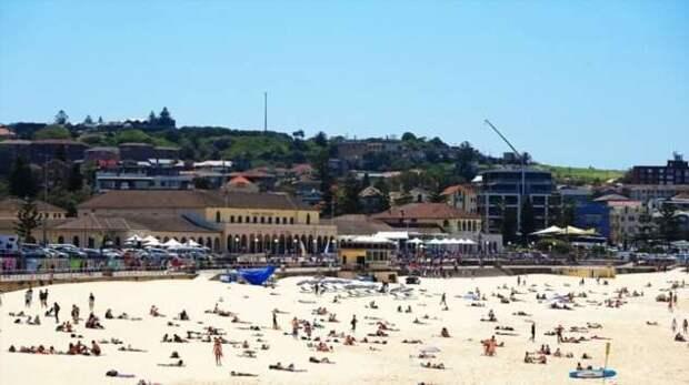 Пляж Бондай-бич в Сиднее, Австралия (8 фото)