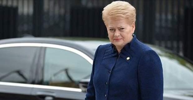 Президент Литвы обратилась с призывом к США