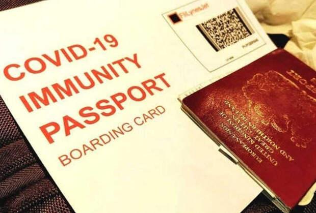 Европол: мошенники продают поддельные паспорта COVID для авиаперелетов