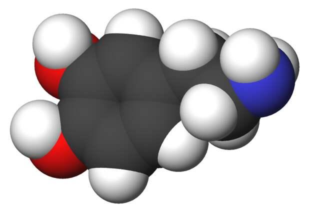 Коротко о моде на дофаминовое голодание: секрет счастья открыт?