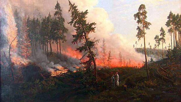 В Калифорнии собираются спилить около 10000 секвой из-за пожаров