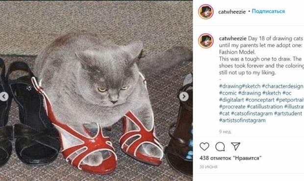 Уморительно смешной кот на фото.