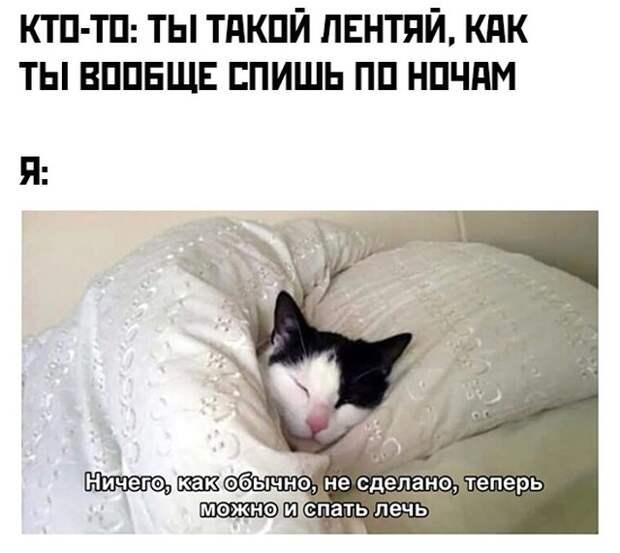Спать, когда дела не сделаны