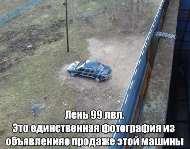 1453386454_avtoprikoly-1