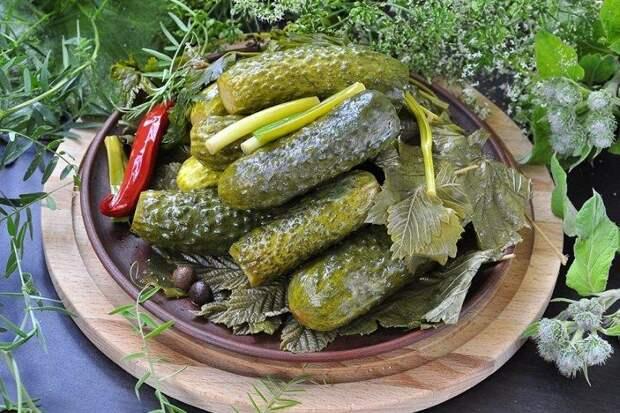 Малосольные огурцы с ароматными листьями в пакете