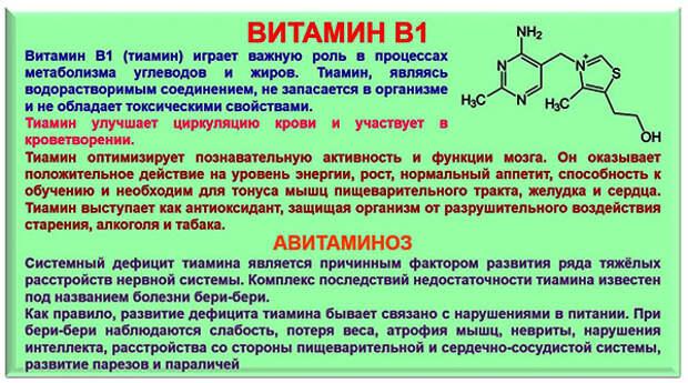 Зачем нам нужен витамин В1