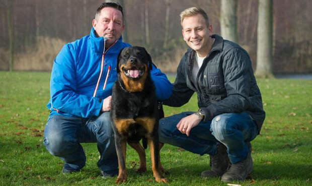 Собака-герой спасла жизнь своему хозяину, открыв дверь врачам скорой
