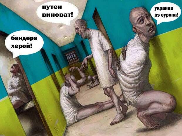Массовое помешательство и «украинский синдром»: Карателей ВСУ сотнями отправляют на принудительное психиатрическое лечение
