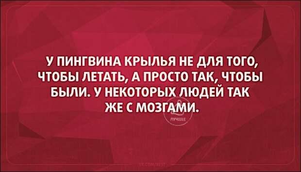 Жена нового русского заподозрила, что муж изменяет ей с горничной