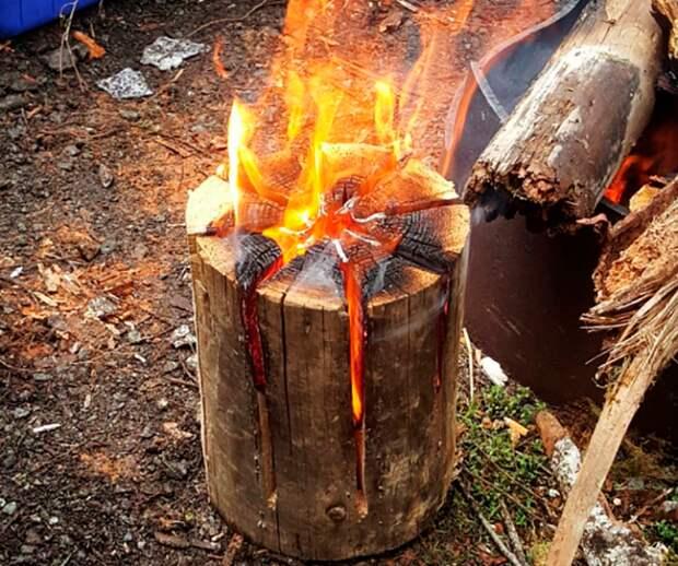 Огонь, разведенный внутри полена, не хуже классического костра / Фото: depo.ua