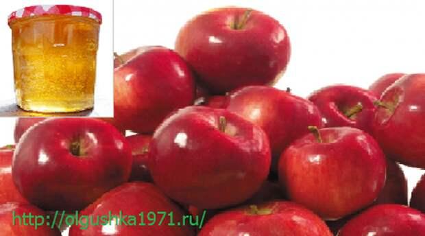 Желе из яблок на зиму. Выбирайте ваш лучший рецепт