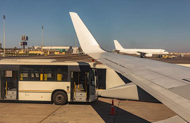 Почему только «Россия»? Турорганизации призвали разрешить полеты в Египет и другим компаниям