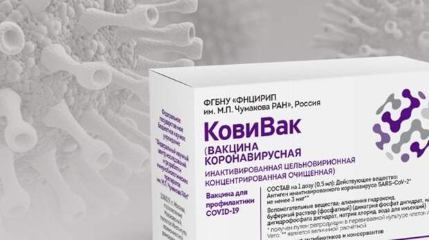 Петербург принял новую партию вакцины «КовиВак» от Центра им. Чумакова