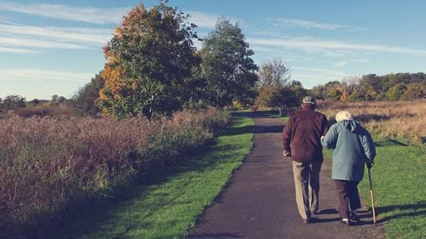 Работающие пенсионеры могут получить возможность уйти в декрет