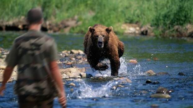 Настоящий Хозяин Тайги – это не медведь, две истории о том, как Хозяин может спасти, а может наказать