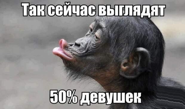 vGCHXPFjLqk
