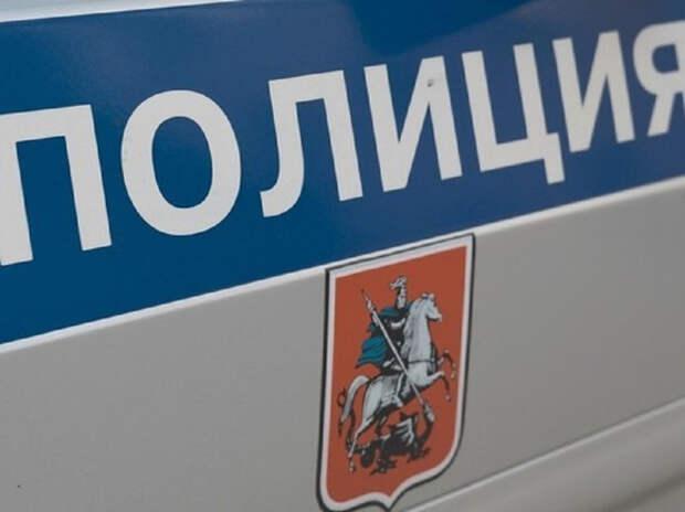 Полиция задержала участницу Pussy Riot Веронику Никульшину в Москве