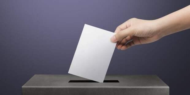 Выборы готовят к «дистанционке»