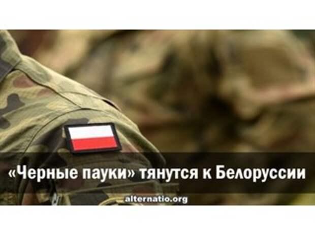 «Черные пауки» тянутся к Белоруссии