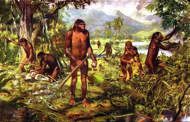 На определенном этапе эволюции предки людей стали объединяться в группы / Фото: znaj.ua