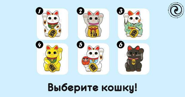 Выберите кошку, которая вас больше привлекает
