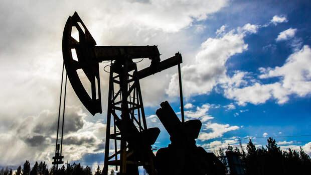 """В Минприроды назвали оценку запасов нефти """"общим балансом по больнице"""""""
