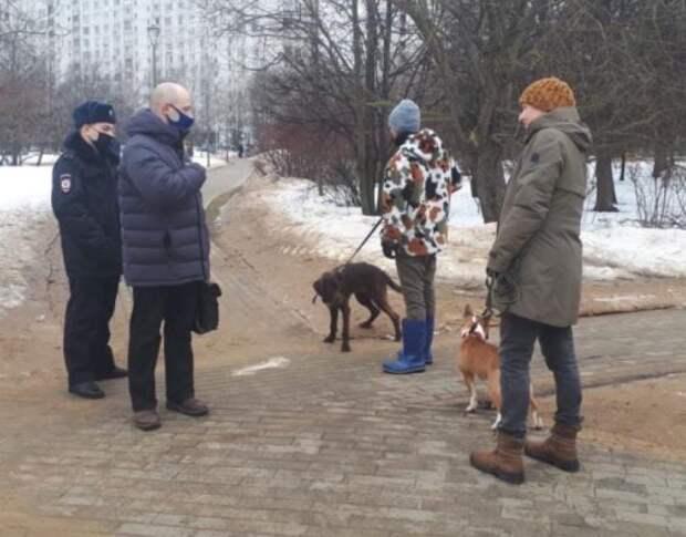 Владельцам собак в Лианозове напомнили об обязанности убирать за своими питомцами