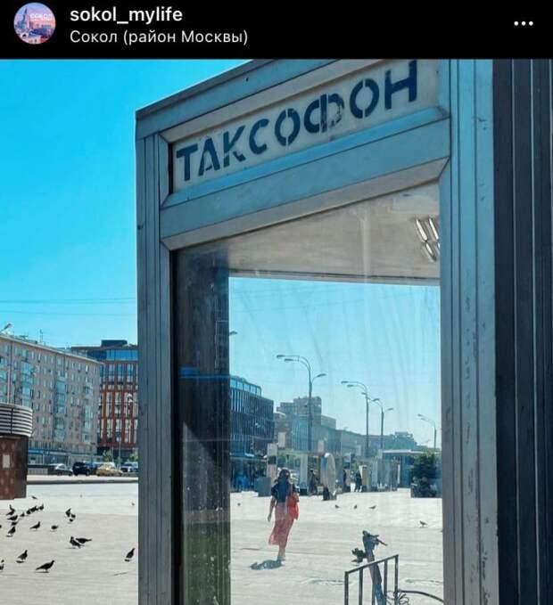 Фото дня: солнечный день в районе Сокол