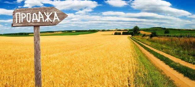 «Будет трагедия». Украинская земля уйдет по цене дорогого коньяка